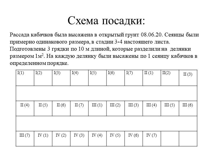 Схема посадки:Рассада кабачков была высажена в открытый грунт 08.06.20. Сеянц...