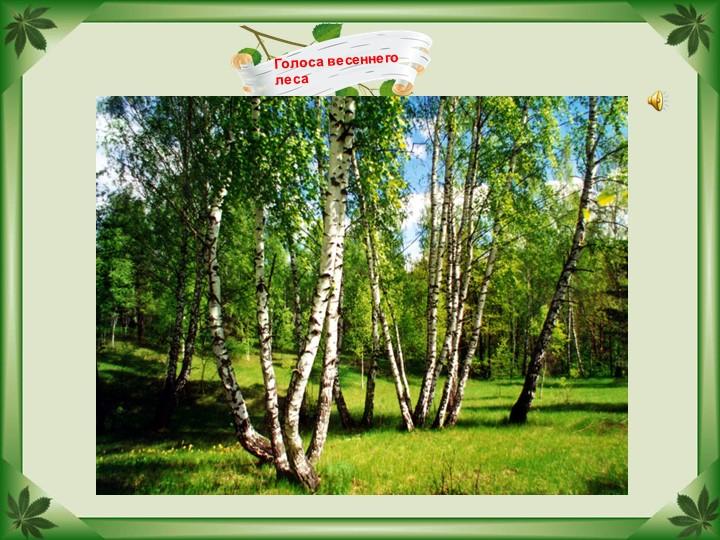 Голоса весеннего леса