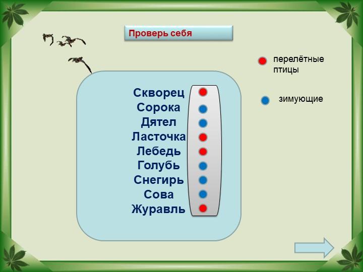 СкворецСорокаДятелЛасточкаЛебедьГолубьСнегирьСоваЖуравльперелётные п...