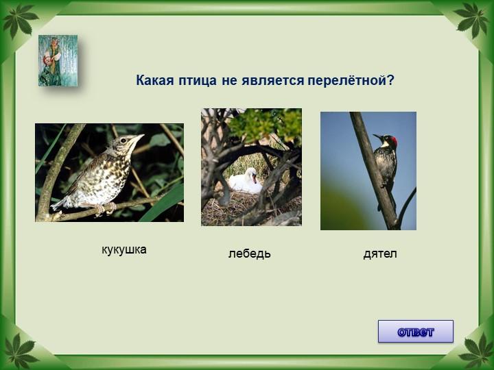 Какая птица не является перелётной?лебедькукушкадятелответ