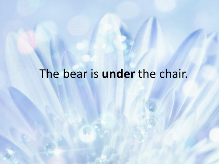 The bear is under the chair.