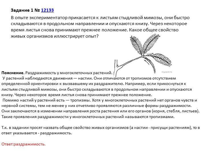 Задание 1№12133В опыте экспериментатор прикасается к листьям стыдливой мим...