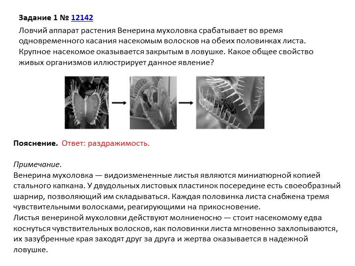 Задание 1№12142Ловчий аппарат растения Венерина мухоловка срабатывает во в...