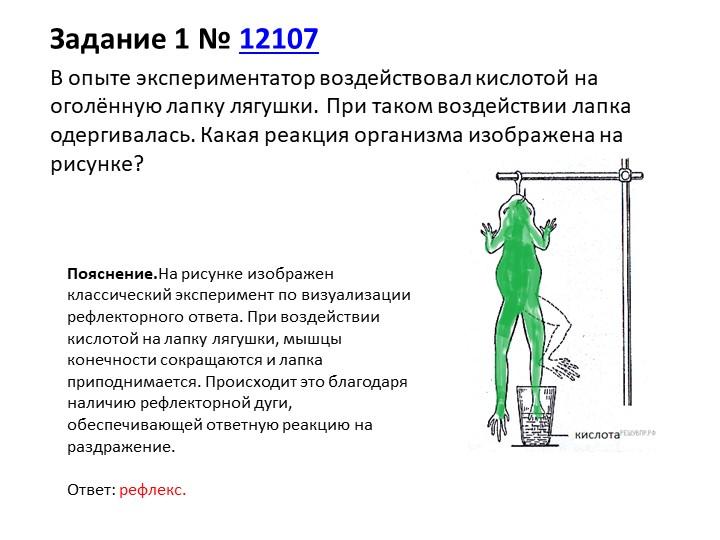 Задание 1№12107В опыте экспериментатор воздействовал кислотой на оголённую...