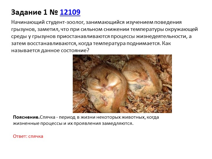Задание 1№12109Начинающий студент-зоолог, занимающийся изучением поведения...