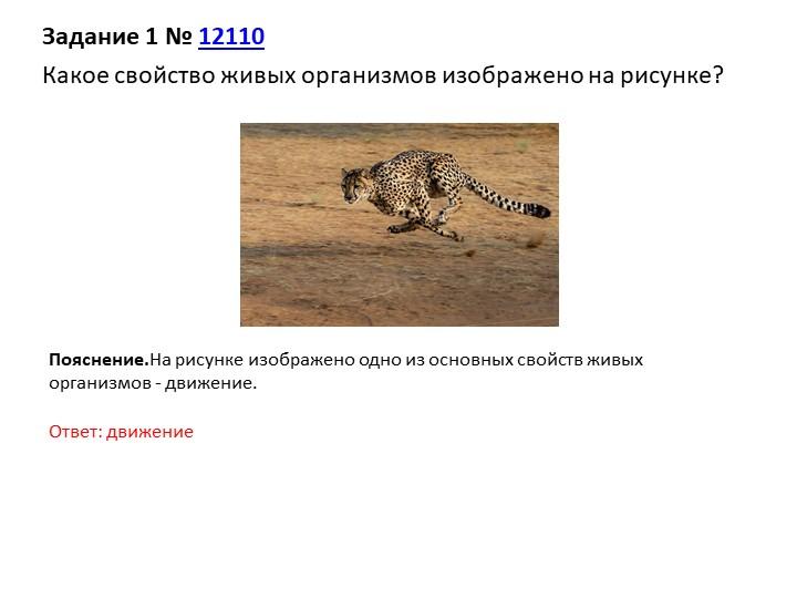Задание 1№12110Какое свойство живых организмов изображено на рисунке?Пояс...