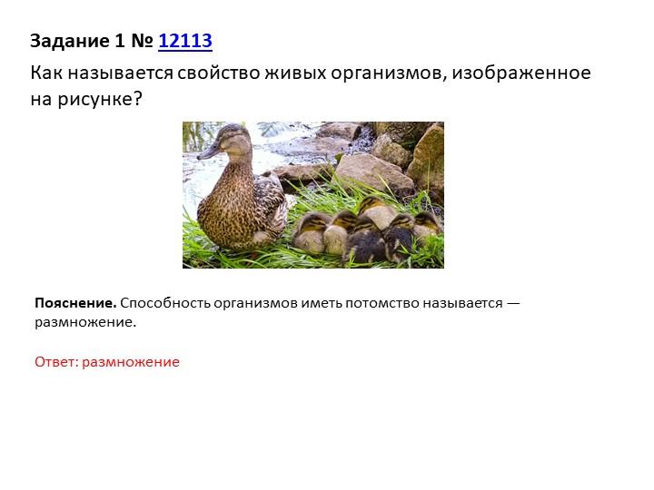 Задание 1№12113Как называется свойство живых организмов, изображенное на р...