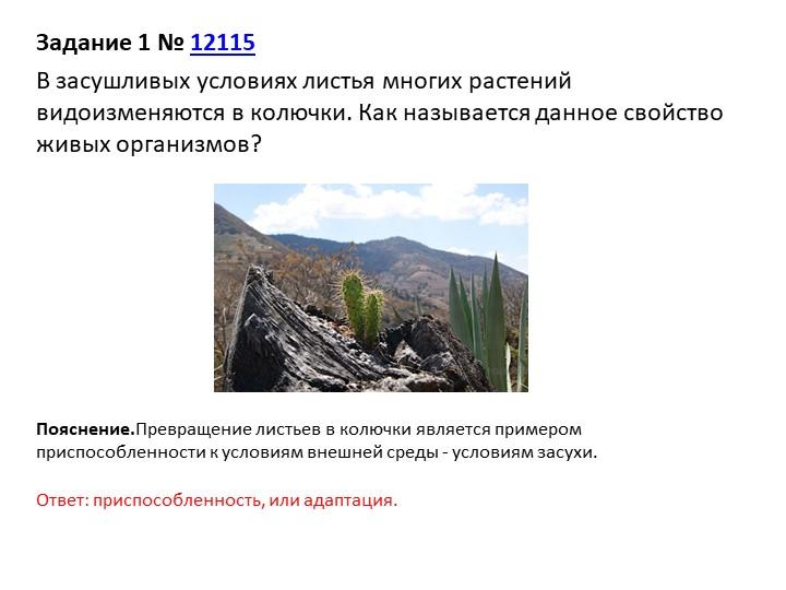 Задание 1№12115В засушливых условиях листья многих растений видоизменяются...