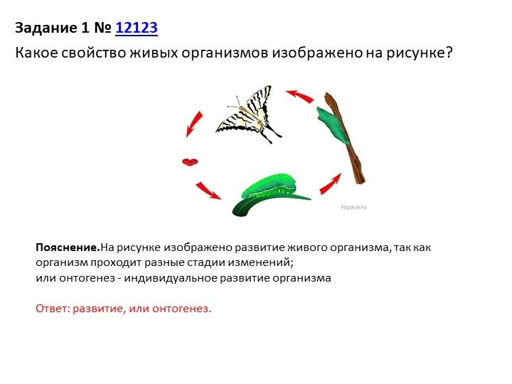 Задание 1№12123Какое свойство живых организмов изображено на рисунке?Пояс...