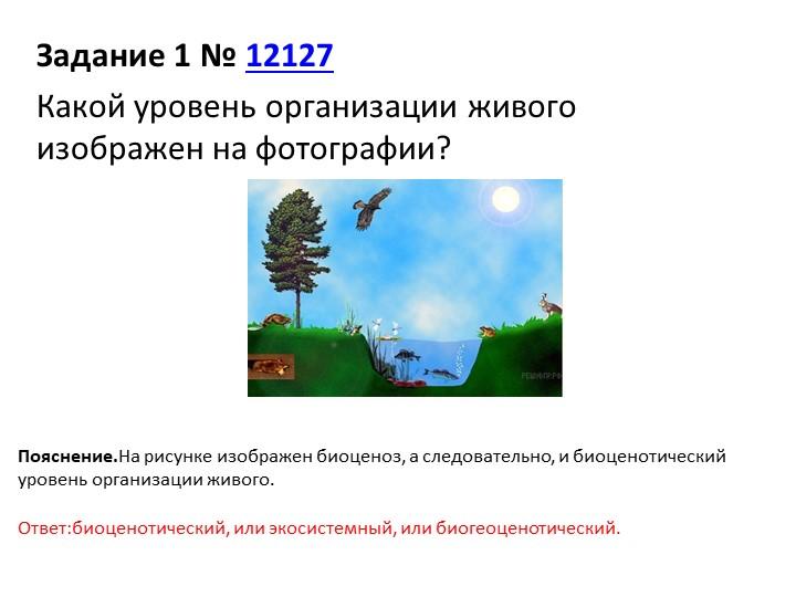 Задание 1№12127Какой уровень организации живого изображен на фотографии?П...