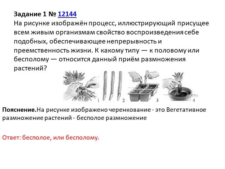 Пояснение.На рисунке изображено черенкование - это Вегетативное размножение р...