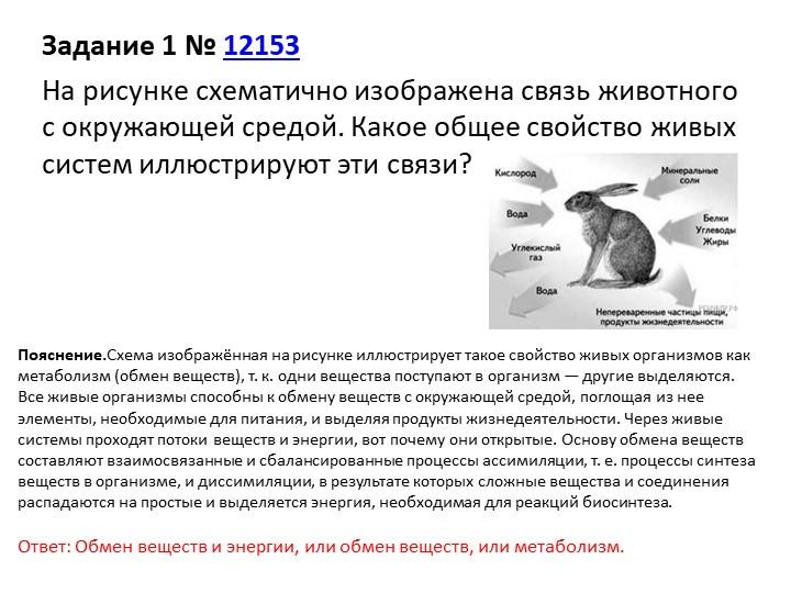 Задание 1№12153На рисунке схематично изображена связь животного с окружающ...