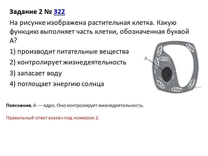 Задание 2№322На рисунке изображена растительная клетка. Какую функцию выпо...