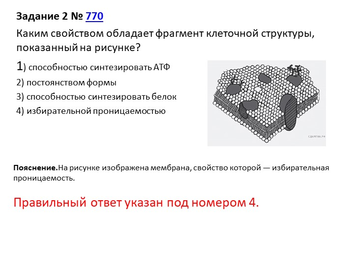 Задание 2№770Каким свойством обладает фрагмент клеточной структуры, показа...