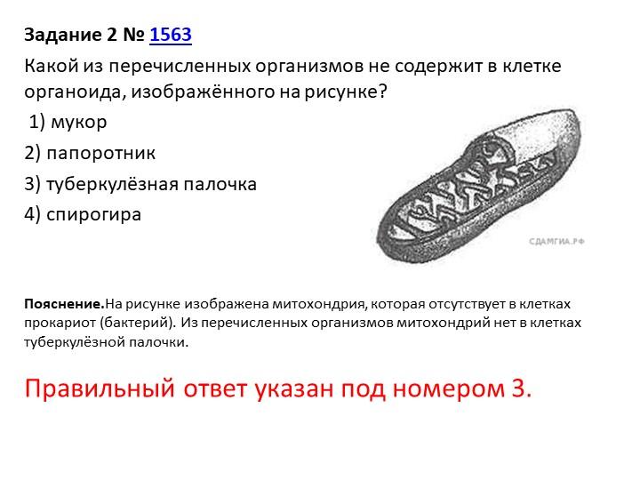 Задание 2№1563Какой из перечисленных организмов не содержит в клетке орган...