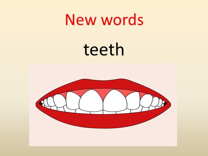 New wordsteeth