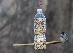 Картинки по запросу кормушки для птиц из пластиковых бутылок