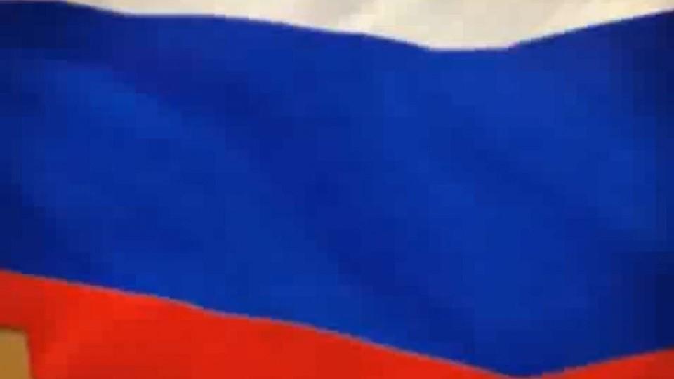 Сверху вниз: белый, синий, красныйКатегория  «Государственные символы» Во...