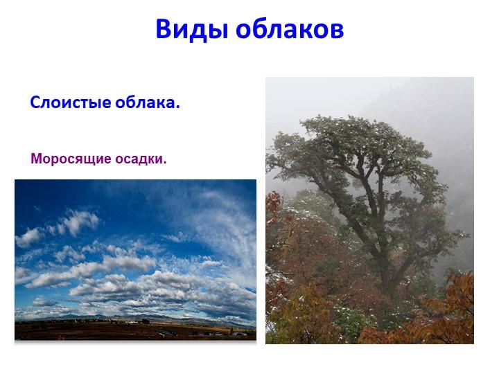 Виды облаковСлоистые облака.Моросящие осадки.