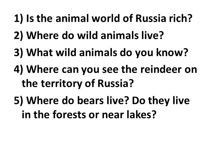 1) Is the animal world of Russia rich?2) Where do wild animals live?3) What...