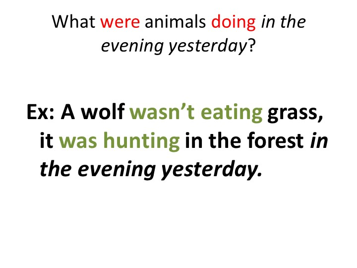 What were animals doing in the evening yesterday?Ex: A wolf wasn't eating gra...