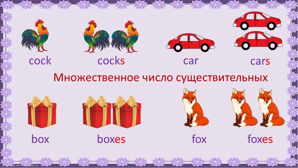 cockcockscarcarsboxboxesfoxfoxesМножественное число существительных
