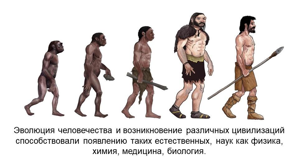 Эволюция человечества и возникновение различных цивилизаций способствовали по...