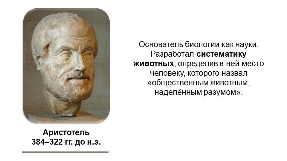 Аристотель384–322 гг. до н.э.Основатель биологии как науки. Разработал систе...