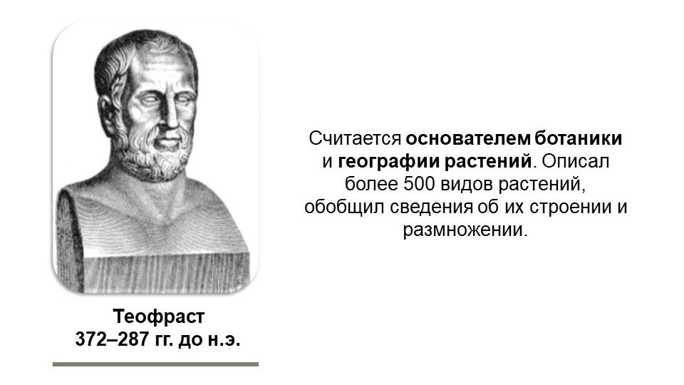 Теофраст372–287 гг. до н.э.Считается основателем ботаники и географии растен...