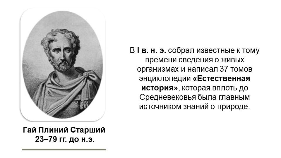Гай Плиний Старший 23–79 гг. до н.э.В I в. н. э. собрал известные к тому вре...