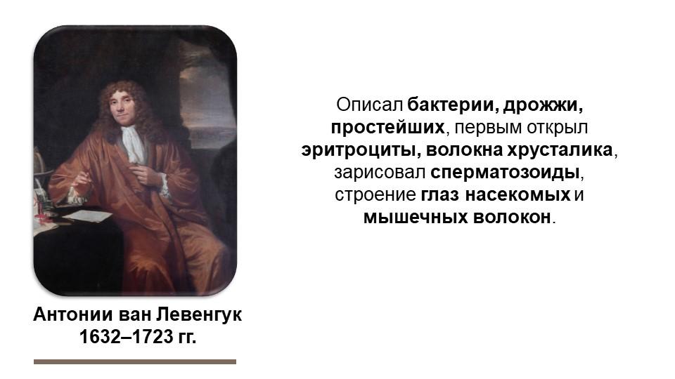 Антонии ван Левенгук1632–1723 гг.Описал бактерии, дрожжи, простейших, первым...