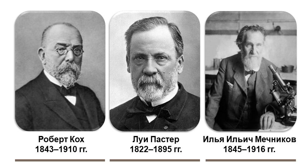 Роберт Кох1843–1910 гг.Илья Ильич Мечников1845–1916 гг.Луи Пастер1822–1895...