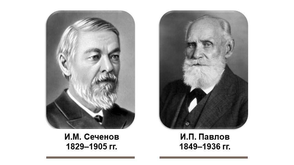 И.М. Сеченов1829–1905 гг.И.П. Павлов1849–1936 гг.