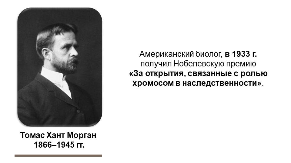 Томас Хант Морган 1866–1945 гг.Американский биолог, в 1933 г. получил Нобеле...
