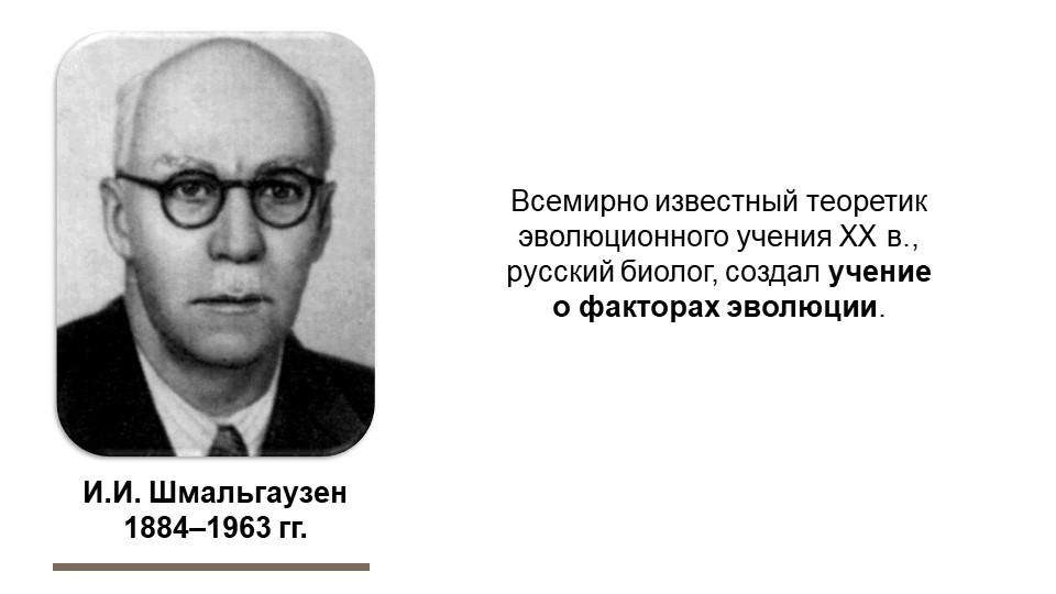 И.И. Шмальгаузен1884–1963 гг.Всемирно известный теоретик эволюционного учени...