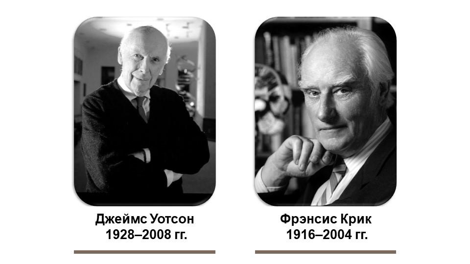 Джеймс Уотсон 1928–2008 гг.Фрэнсис Крик 1916–2004 гг.