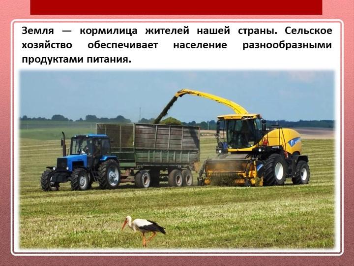 Земля — кормилица жителей нашей страны. Сельское хозяйство обеспечивает насел...