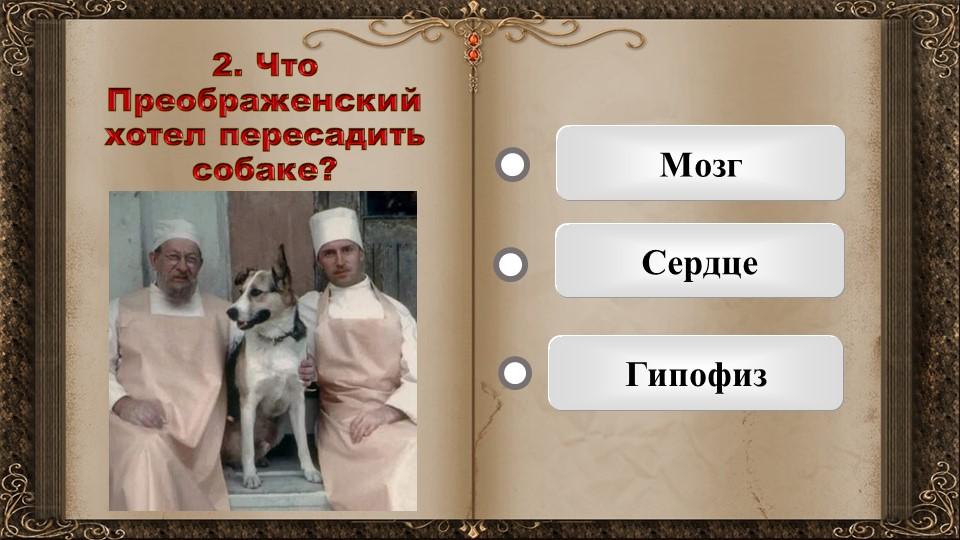 2. Что Преображенский хотел пересадить собаке?   МозгСердцеГипофиз