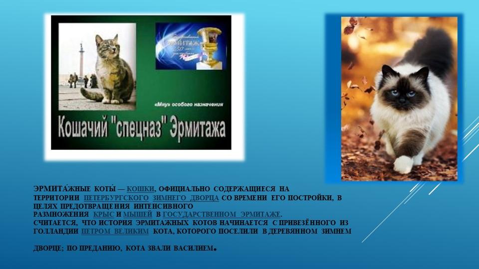 Эрмита́жные коты́—кошки, официально содержащиеся на территориипетербургско...