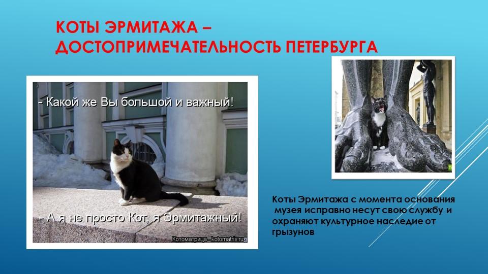 Коты Эрмитажа – достопримечательность ПетербургаКоты Эрмитажа с момента основ...