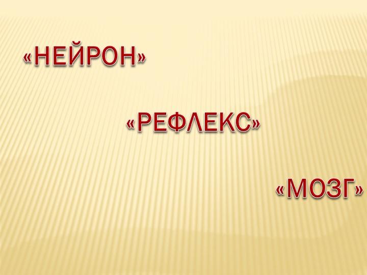 «НЕЙРОН»«РЕФЛЕКС»«МОЗГ»