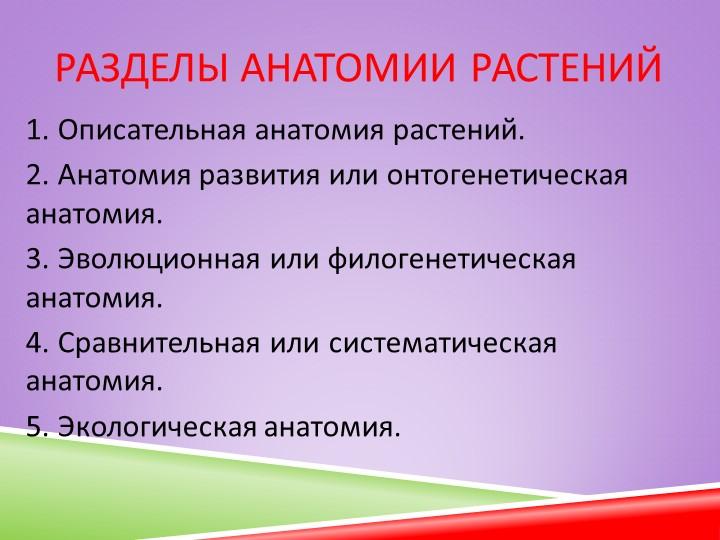 Разделы анатомии растений1. Описательная анатомия растений.2. Анатомия разви...
