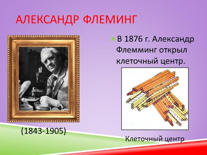Александр ФлемингВ 1876 г. Александр Флемминг открыл клеточный центр.(1843-1...