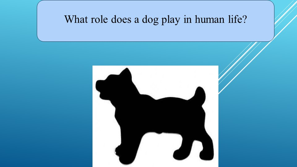 What role does a dog play in human life?