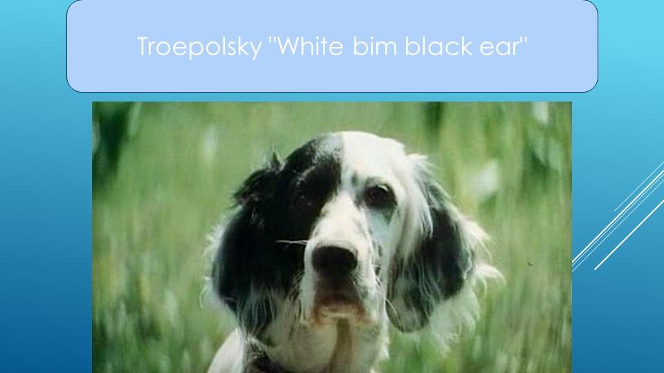 "Troepolsky ""White bim black ear"""