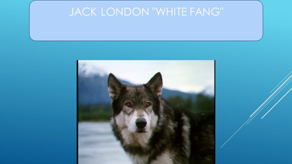 """Jack London """"White Fang"""""""