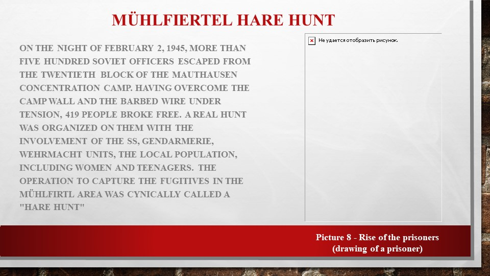 Mühlfiertel hare huntOn the night of February 2, 1945, more than five hundred...
