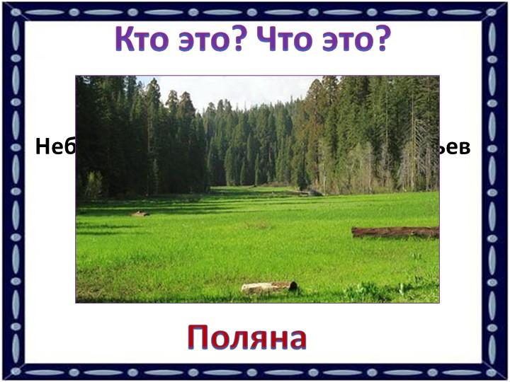 Кто это? Что это?Небольшое пространство без деревьев посреди леса.Поляна