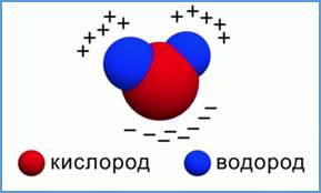 https://static-interneturok.cdnvideo.ru/content/konspekt_image/69821/9f38c260_1991_0131_0fce_22000aa81b95.jpg