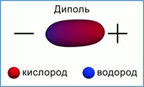 https://static-interneturok.cdnvideo.ru/content/konspekt_image/69822/9ff12740_1991_0131_0fcf_22000aa81b95.jpg